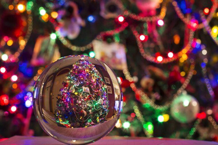 Immagini Natale Hard.Ravenna Sequestrato Albero Di Natale Hard