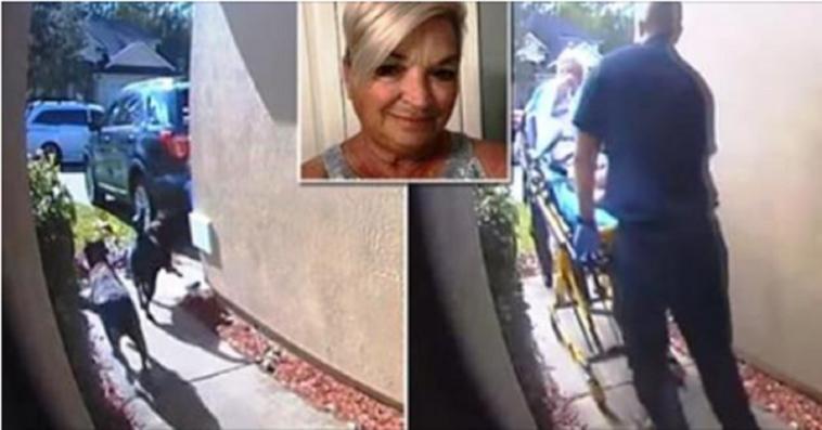 """Ha un ictus e dice ai suoi cani: """"Mamma ha bisogno di aiuto"""". Le hanno salvato la vita/ VIDEO"""