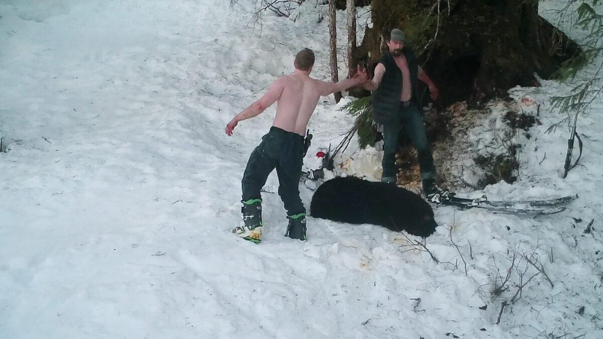 Padre e figlio uccidono mamma orsa e i suoi cuccioli in letargo e se ne vantano / VIDEO