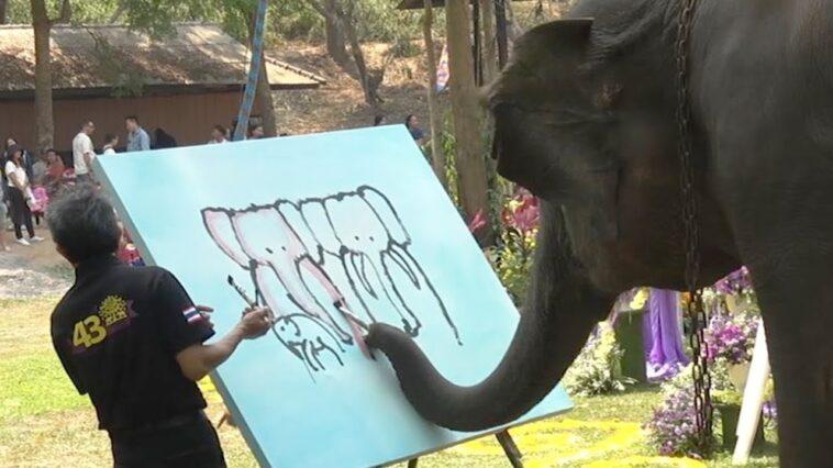 Elefante costretto a pitturare per i turisti: è un atto crudele / VIDEO