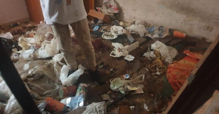Teneva 10 cani nella sporcizia (e uno non era suo): denunciata donna a Palermo / FOTO