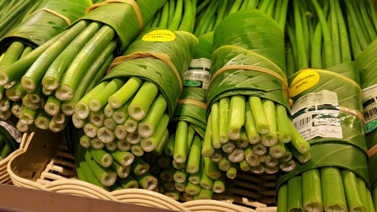 Lotta alla plastica monouso: nei supermercati usano le banane al posto dei sacchetti