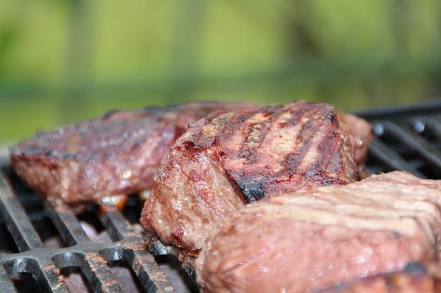 carne-brace