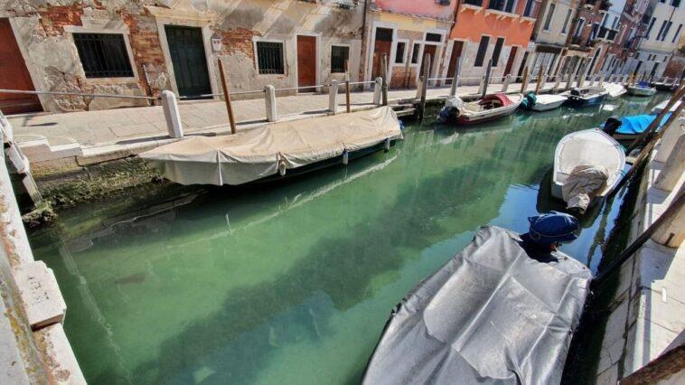 Acqua limpida a Venezia per il Coronavirus