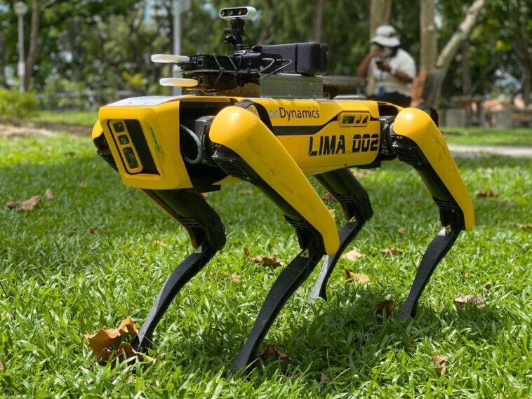 cane robot singapore