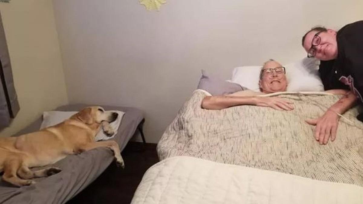 Cane e padrone muoiono a poche ore di distanza