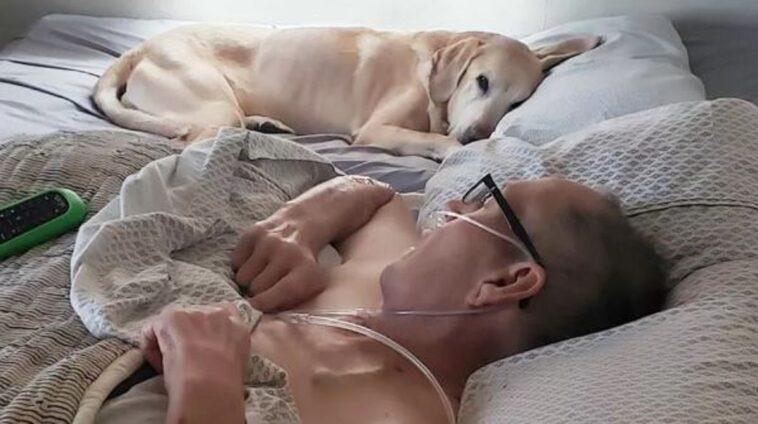 cane e padronemuoiono a poche ore di distanza