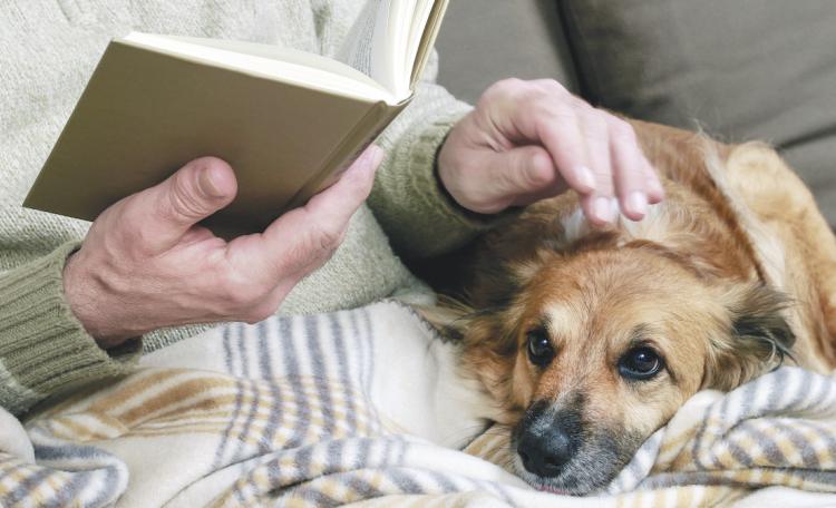 cane e anziana che legge